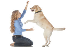 Girl with her dog. Portrait of happy girl with her dog isolated on white background Stock Photo