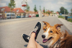Girl and her dog traveling Stock Images