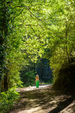 A girl and her dog walking along a hiking trail in the troodos mountains,cyprus,3 stock photos