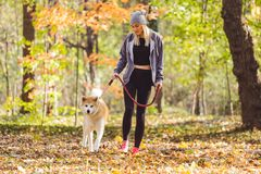 Girl and her dog walking in park royalty free stock photos