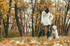 Girl and her dog walking in a park Royalty Free Stock Photos
