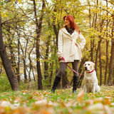 Girl and her dog walking in a park Stock Images