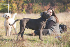 Girl with her dogs stock photography