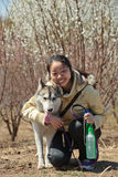 Girl and her friend. Chinese girl and her Siberian husky Royalty Free Stock Image