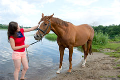 Girl and her handsome horse. Stock Photo
