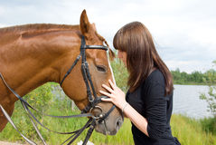 Girl and her handsome horse.Friendship Stock Photography