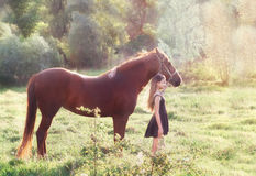 Girl and her horse on the sunlit field Stock Photo