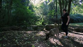 Girl and dog walk in front of large cinder blocks stock footage