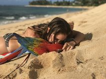 Girl and her Macaw at the beach Stock Image