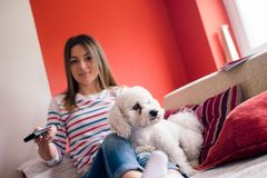 Girl and her pet on sofa Stock Photos