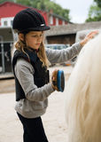 Girl an her pony. Little girl cleaning the pony with brush Royalty Free Stock Photo