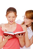 Girl and her tutor Stock Photography