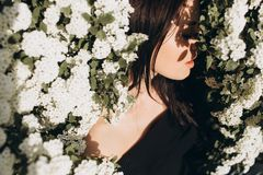 Girl in the bushes with white flowers royalty free stock image