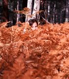 Girl hiding in autumn forest Stock Photography