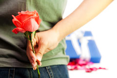 Girl hiding back the red rose Stock Images