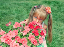 Girl hiding behind the flowers Stock Image