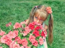 Girl hiding behind the flowers. Little girl hiding behind the flowers Stock Image