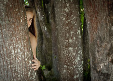 Girl hiding behind a tree. Young teenage girl hiding behind a tree trunk Royalty Free Stock Images
