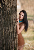 Girl hiding behind a tree. Portrait of a smiling brunette girl in suede dress hiding behind a tree Royalty Free Stock Photography
