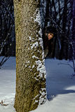 Girl hiding behind the tree on a snowy evening Stock Images