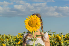Girl hiding behind yellow flower sunflower Stock Photography