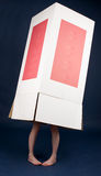 Girl hiding in box. Girl hidden inside a cardboard box Royalty Free Stock Photos