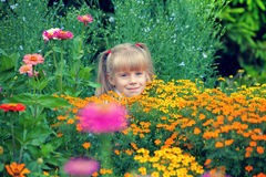 Girl hiding in flowers. Girl hiding in the flowers in the garden Royalty Free Stock Image