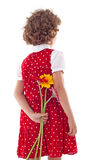 Girl hiding flowers for mother's day. Back of cute little girl in red dress, hiding flowers for mother's day, isolated Stock Photos