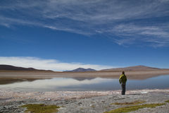 Girl at the highlands. Girl in the Andean highlands in Bolivia Stock Photography