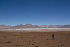 Girl at the highlands. Girl in the Andean highlands in Bolivia Royalty Free Stock Image