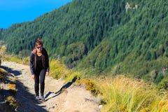 Girl hiker on Ben Lomond Stock Photos