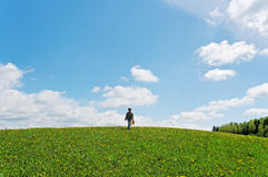 Girl on the hill. Stock Photos