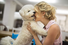 Girl his white curly Bichon Frise dog. Girl in a restaurant embraces tenderly his white curly Bichon Frise dog Royalty Free Stock Photo