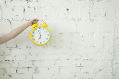 Girl holding alarm clock in her hand  on white brick backgroung Stock Photos