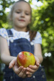 Girl Holding Apple. Blurred young girl holding out a fresh apple Royalty Free Stock Photo