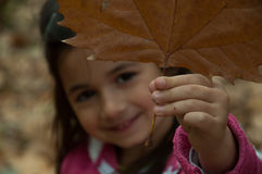 Girl holding autumn leaf Royalty Free Stock Image