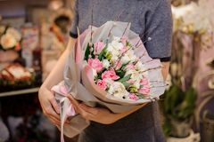 Girl holding a beautiful bouquet of rose colour tulips and white ranunculuses royalty free stock photo