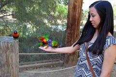 Girl holding birds Stock Images