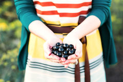 Girl holding a black currant. Hands holding fresh berries. black currant, blackberry royalty free stock photo