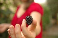 Girl holding blackberry Royalty Free Stock Photos