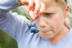 Girl holding blueberries Stock Photography