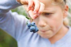 Girl holding blueberries stock photography
