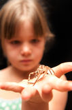 Girl holding brown spider on the palm of her hand Stock Image