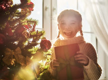 Girl holding Christmas present Royalty Free Stock Images