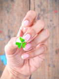 The girl holding  clover leaf concept for love hope and goodness Royalty Free Stock Photo