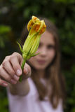 Girl holding courgette flower Royalty Free Stock Images