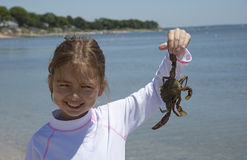 Girl holding a crab Stock Photography
