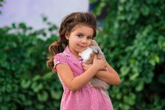 Girl is holding a cute little rabbit, outdoor shoot stock images