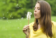 Girl holding dandelion on meadow in evening sunshi. Ne stock photography