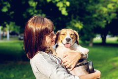 Girl holding a dog in her arms on the nature background at summer time. Lifestyle photo. royalty free stock photos